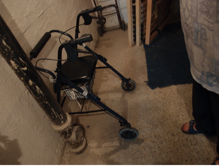 Pains, pleasures, and a new electric wheelchair by Anna Mann